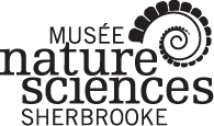 Musée de la nature et des sciences de Sherbrooke.All rights reserved